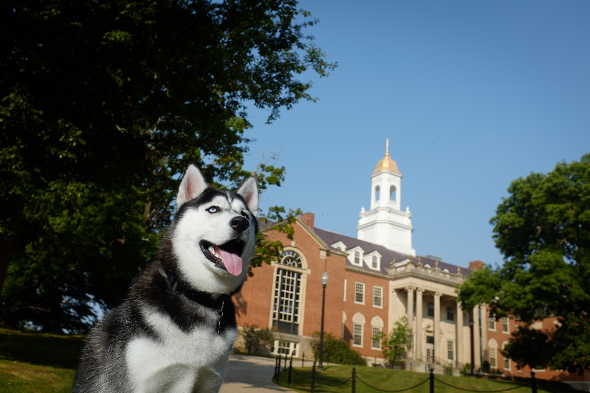 Committed to having UConn athletic programs meet the highest standards.